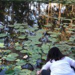 Woman putting paper boat on pond | Wellness Retreat Image Haven Yoga & Meditation